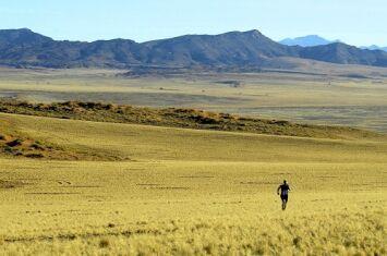 100 km of Namib Desert: Auf 4 Etappen durch das fasizinierende Namibia