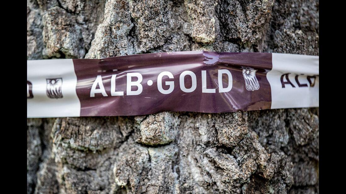 ALB-GOLD Winterlauf 2021