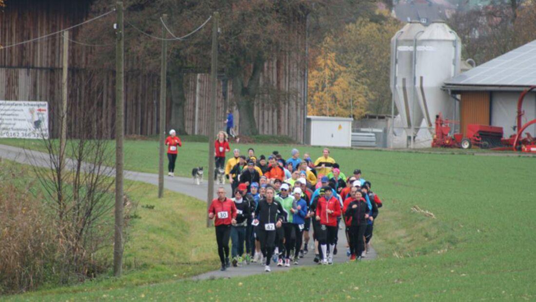 Amberger Ultralauf bei km 18.