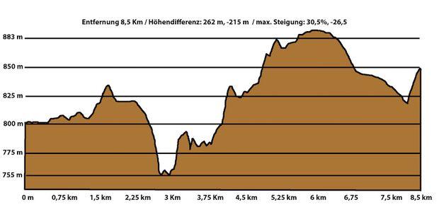 Ammer Trail Run Bad Bayersoien Höhenprofil 2016