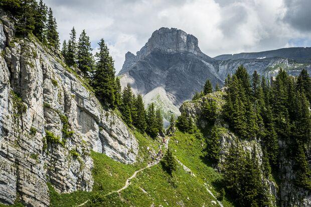 Beim Eiger Ultra Trail ist Ihre Ausdauer auf allen Strecken gefordert. Doch mit dem fantastischen Panorama mit Blick auf den Eiger genießen Sie das.