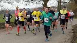 Bienwald-Marathon