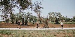 Borgo Egnazia Triathlon 2019