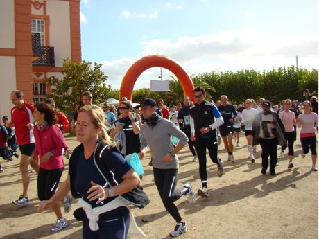 Charity Walk & Run Wiesbaden