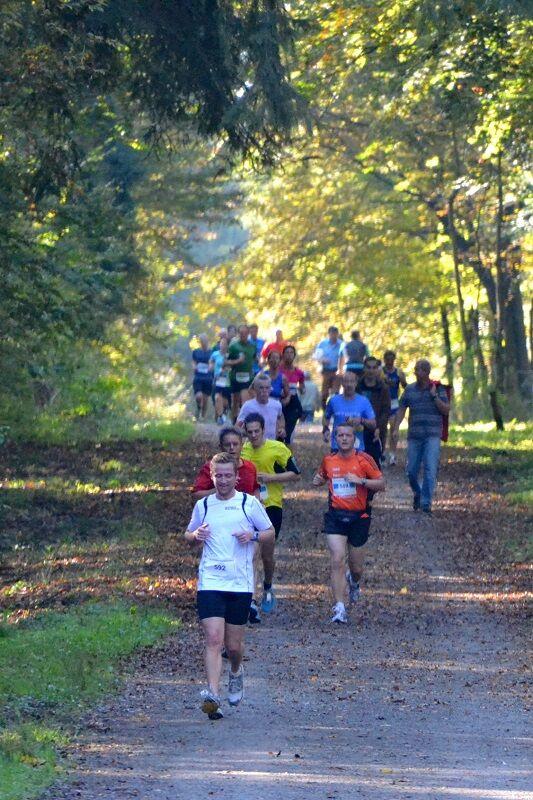 Der Refrather Herbstlauf führt durch den Königsforst.