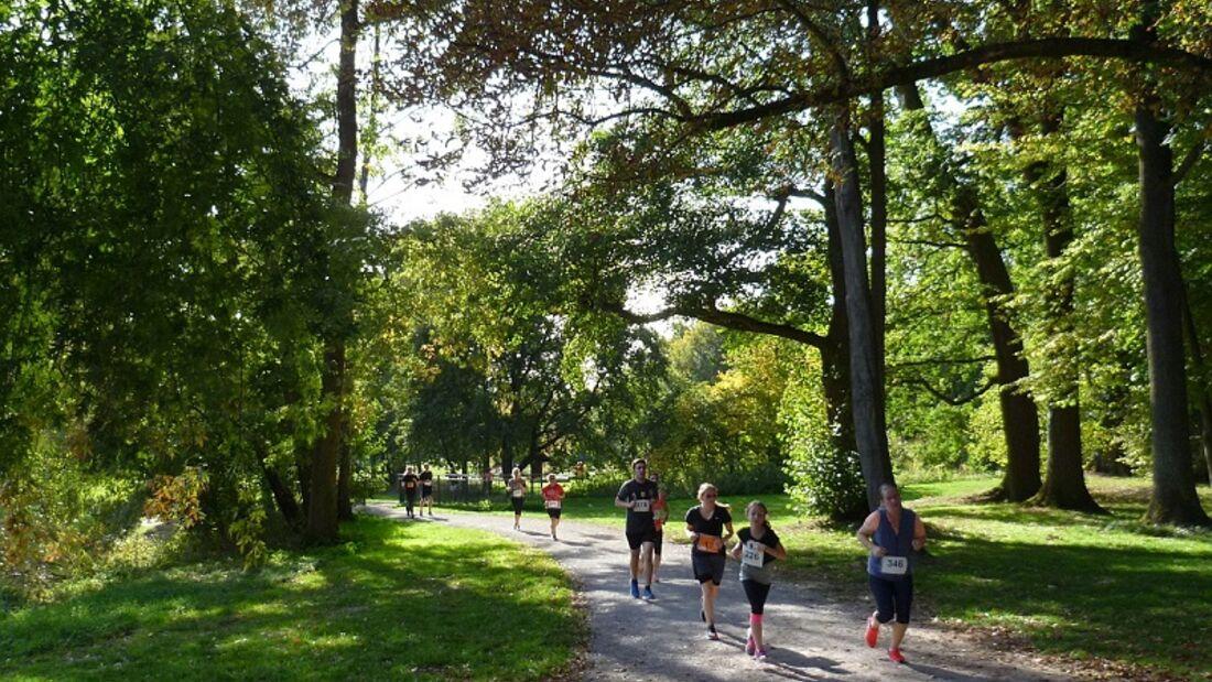 Der Spargel-Lauf führt durch den Burgdorfer Stadtpark.
