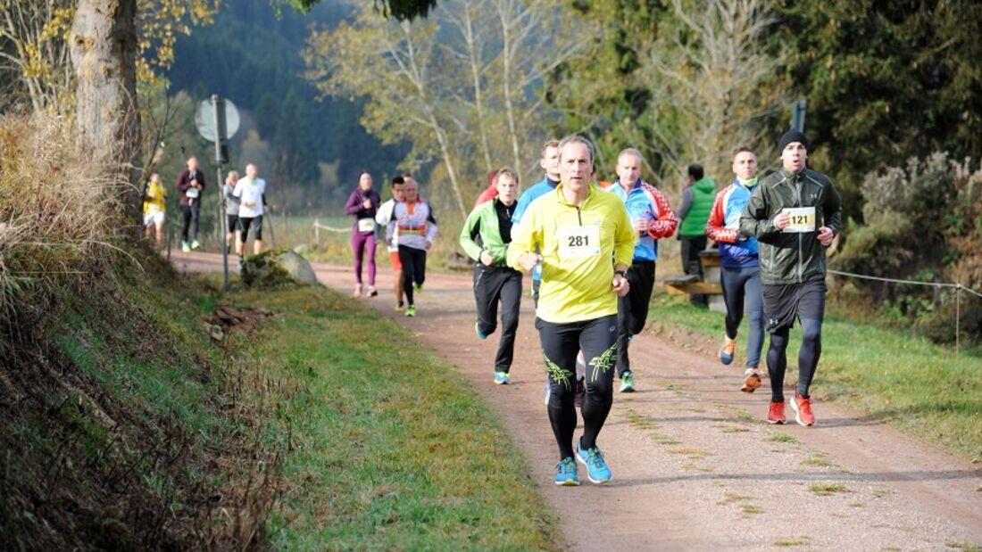 Der WING-Halbmarathon führt durch die Schwarzwald-Landschaft rund um Furtwangen. 2