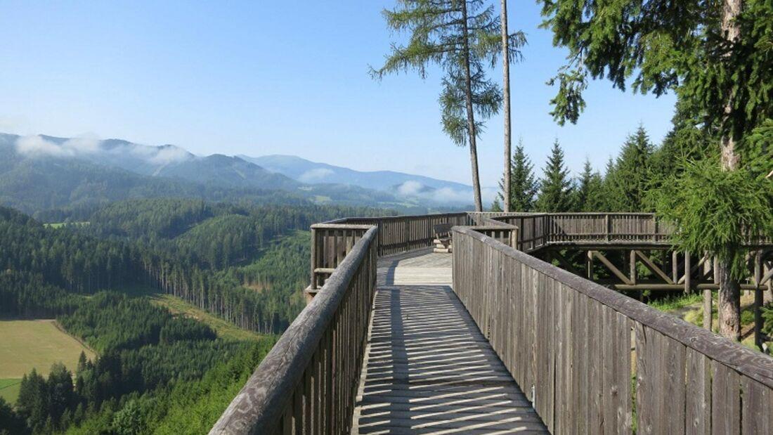 Der Wipfelwanderweglauf in St. Margarethen macht seinem Namen alle Ehre.