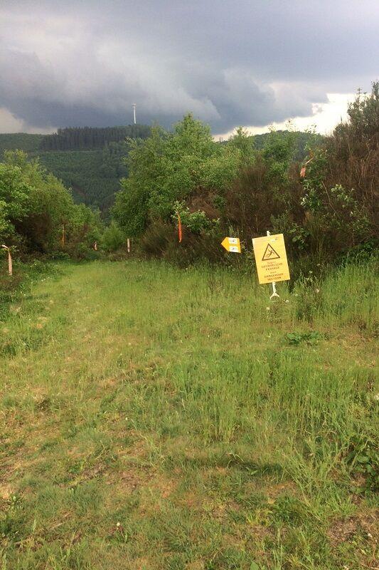 Die Strecke beim Sauerland Trailrun