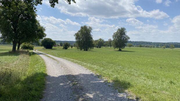 Die markierte Strecke führt durch welliges, offenes Gelände ...
