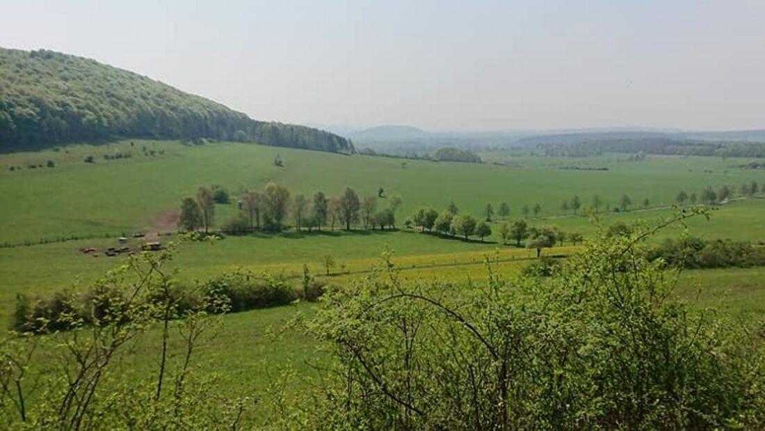 Dreienberg-Panoramalauf Friedewald: Idyllische Landschaften rund um den Dreienberg