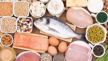 Fleisch, Milch, Käse und Hülsenfrüchte sind ideale Eiweiß