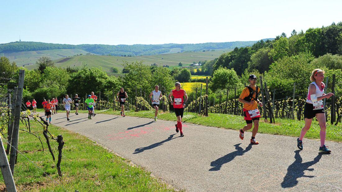 Heilbronner Trollinger-Marathon 2016