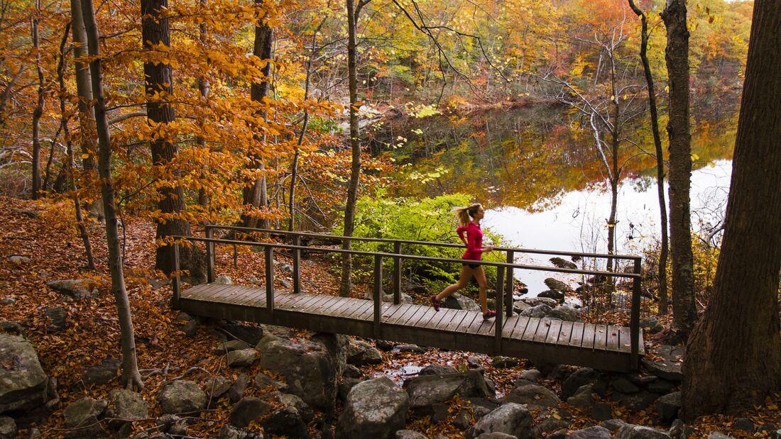 Herbst-Special Titelbild