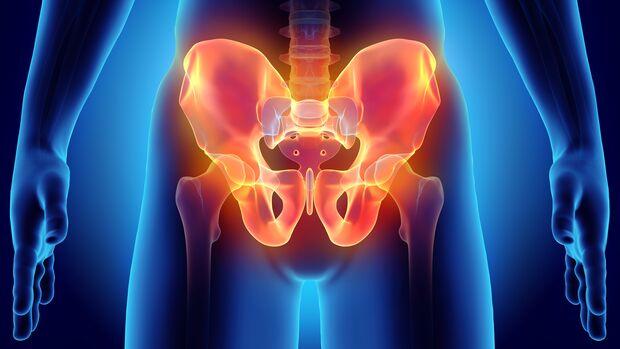 Hüft- und Beckenknochen