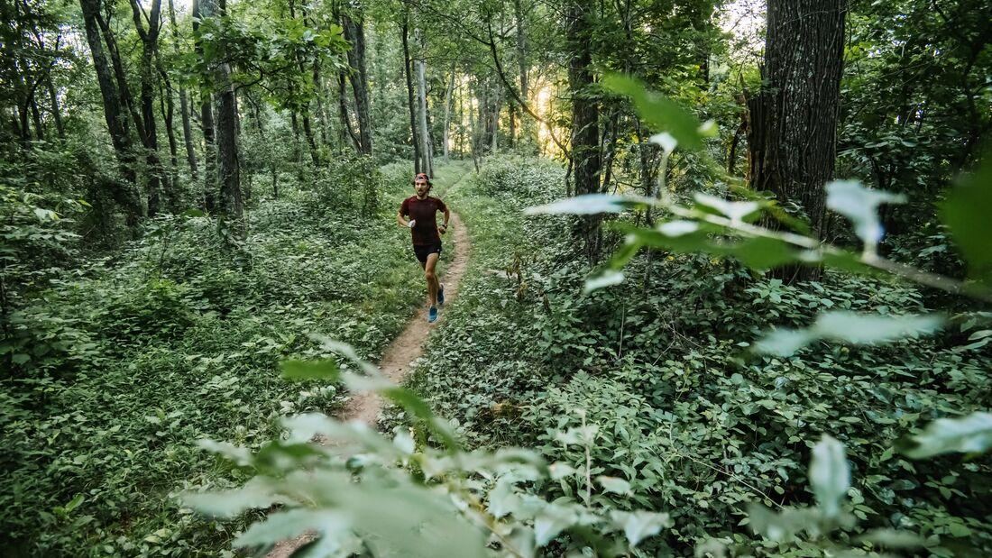 Im Wald, abseits von Verkehr und Lärm, laufen wohl die meisten am liebsten.