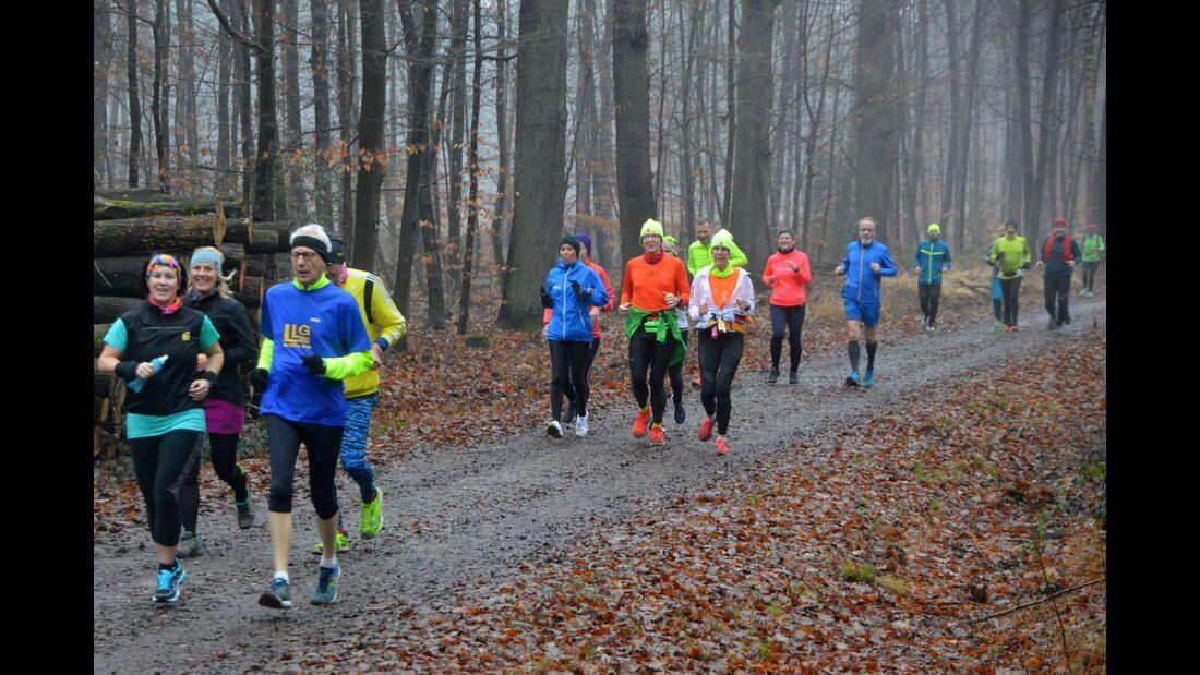 Königsforst-Marathon 2023