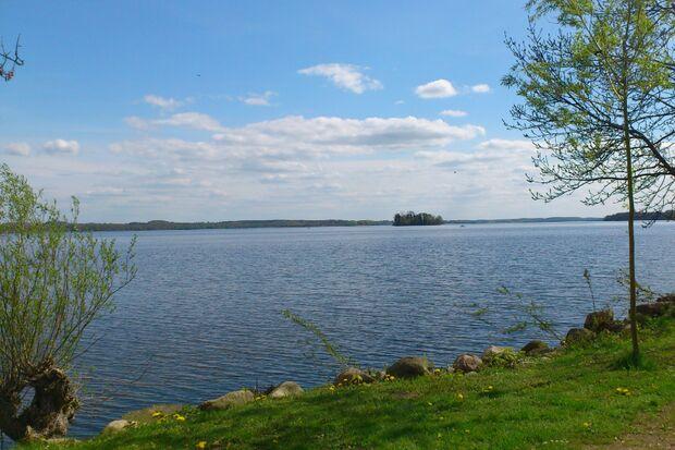Lauf um den Plöner See und Marathon