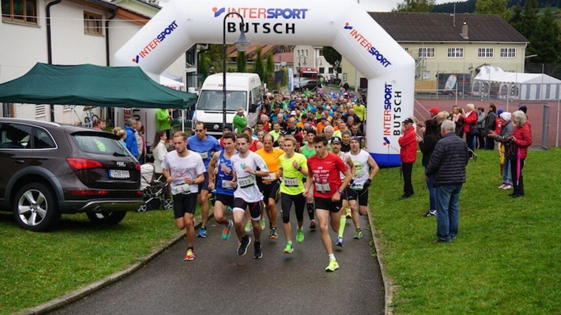 Lupfenlauf Talheim 2015 Start