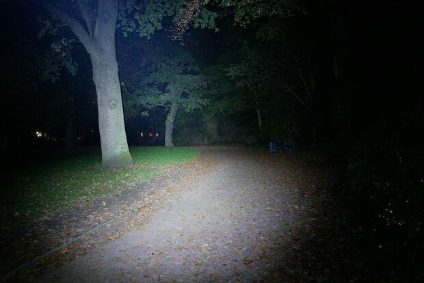 Lupine Blika Lichtkegel