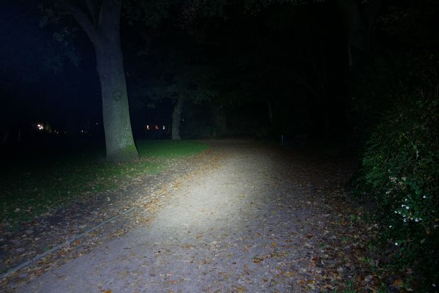Lupine Neo Lichtkegel