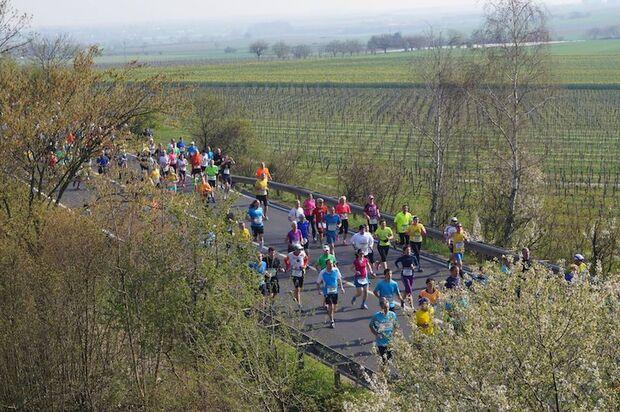 Marathon Deutsche Weinstraße 2018 Landschaft