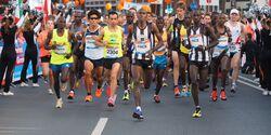 Münster-Marathon 2016