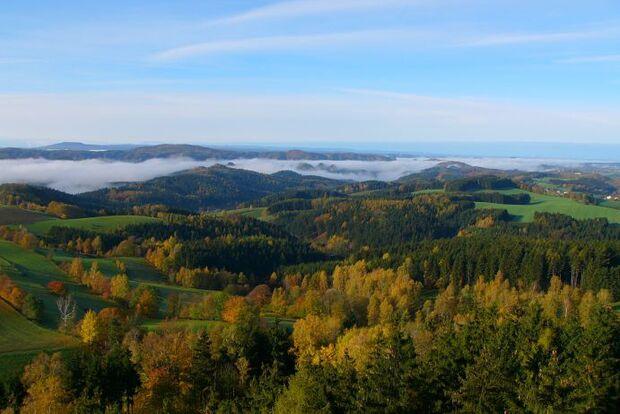 Panoramatour Sächsische Schweiz Ausblick im Zielort