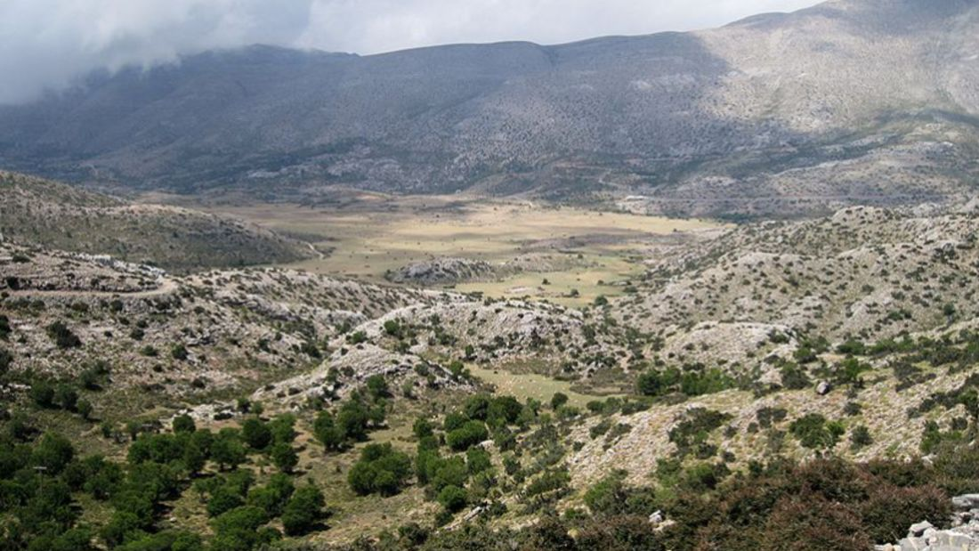 Psiloritis Race Kreta
