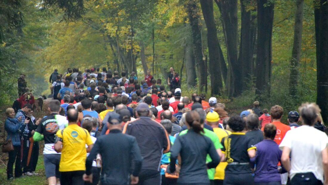"""Refrather Herbstlauf: Über 600 Läufer aus dem ganzen Rheinland an der Schutzhütte """"Am Dicken Stock"""" erwartet."""