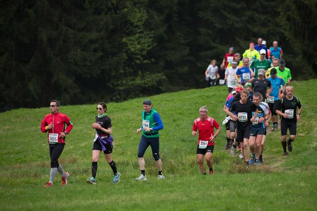 Rennsteiglauf 2015