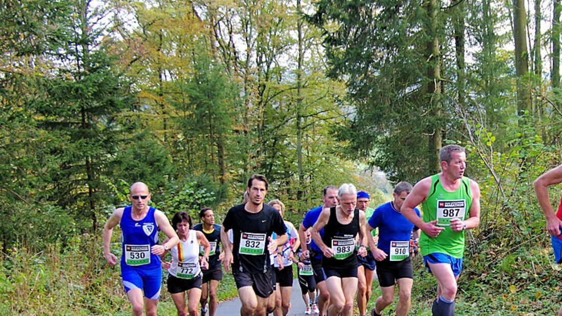 Rothaarsteig-Marathon 2014