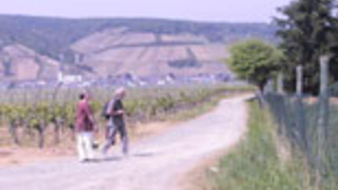 Rotwein-Marathon