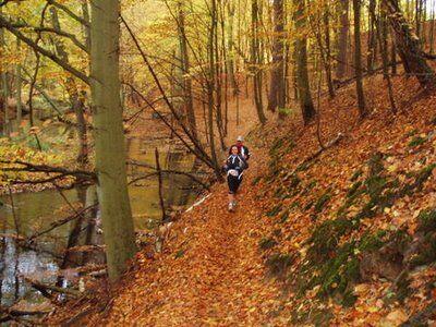Schlaubetal Marathon