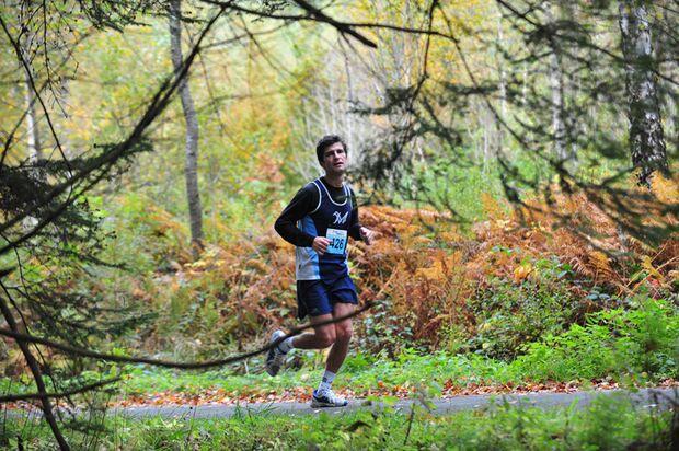 Schwarzwald-Marathon Bräunlingen Strecke
