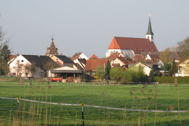 Seligenportener Benefizlauf - Kloster