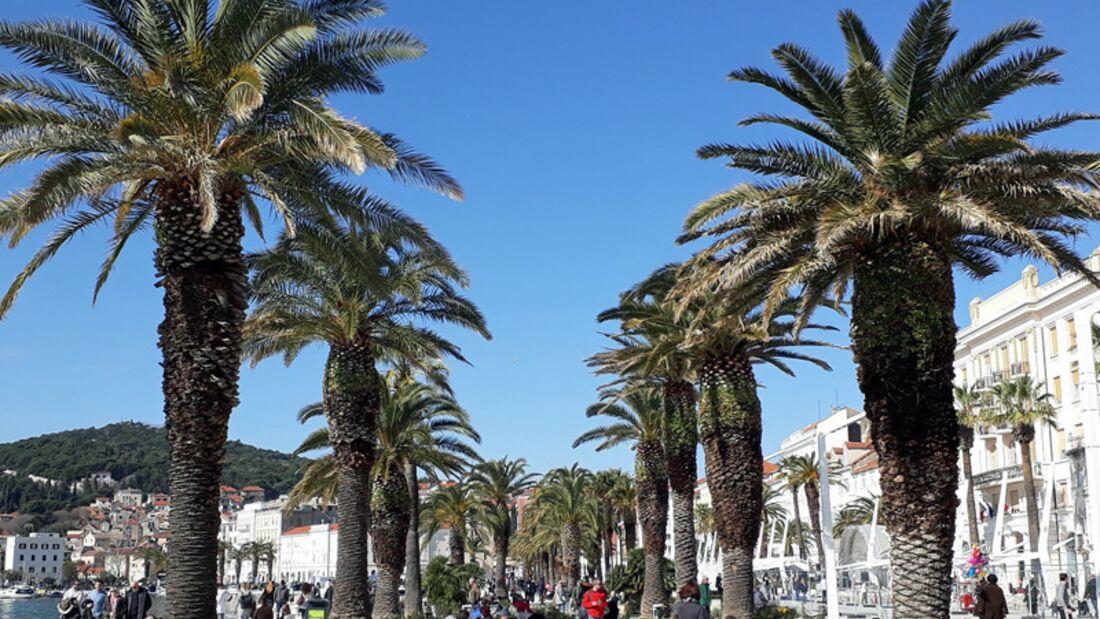 Split-Halbmarathon: Mediterranes Flair in Split