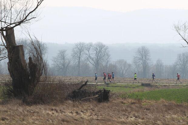 Springe-Deister-Marathon Strecke