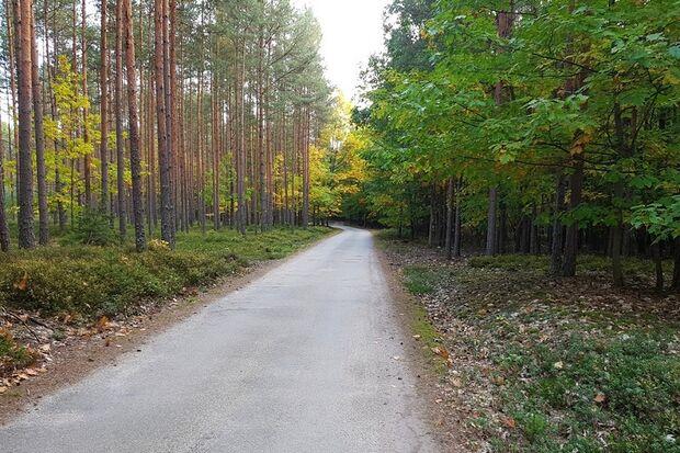 Strecke beim Třeboň-Marathon