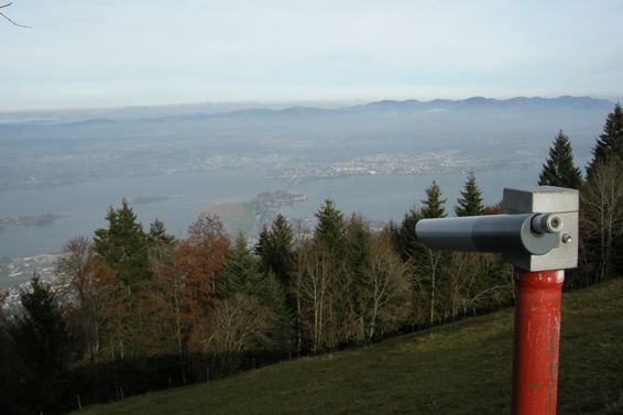 The Wayve Zürich 1