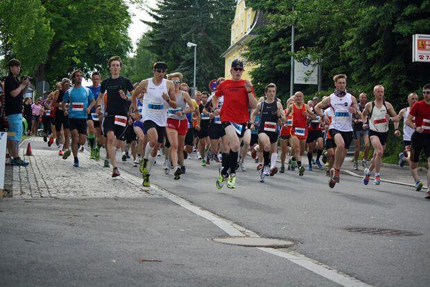 Vier Strecken von 2,5 km bis 20 km stehen beim Adelsberglauf auf dem Programm.