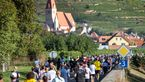 Wachau-Marathon 2019