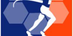 Wolfsburg-Marathon Logo 2018