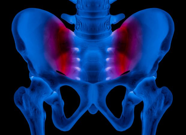 X-ray of human pelvis Anterior view red highlight on sacroiliac joint pain area- 3D medical and Biomedical illustration- Healthcare- Human Anatomy and Medical Concept -Blue tone color