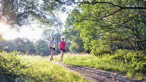 Zwei Läuferinnen am Morgen auf einem Feldweg